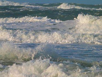 Wilde zee van Lydia de Lange
