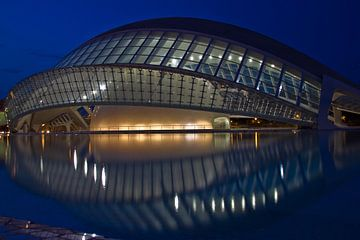 Valencia by Calatrava von Dave Lans