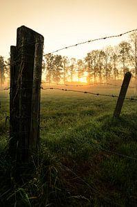 Opkomende zon in de velden van Leut