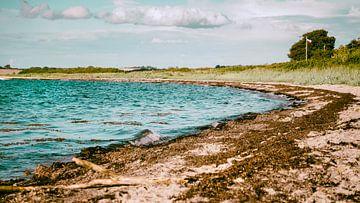 De baai van Heiko Westphalen