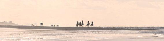 Panorama - Een herfstdag op het strand van Roel Ovinge