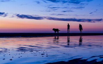 Man en vrouw laten de hond uit op het strand bijzonsondergang van