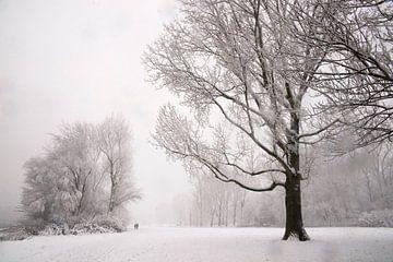 Winter Park van Ton van Buuren