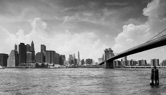 New York Panorama van Jesse Kraal