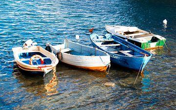 gekleurde bootjes in het water van Bianca ter Riet