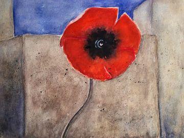 An der Mauer - Roter Mohn von Christine Nöhmeier