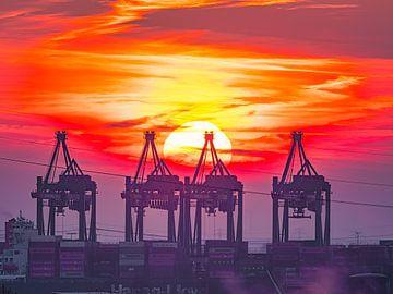 2018-03-02 Sonnenuntergang über dem Hafen