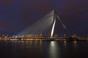 Rotterdam Erasmusbrug bij nacht