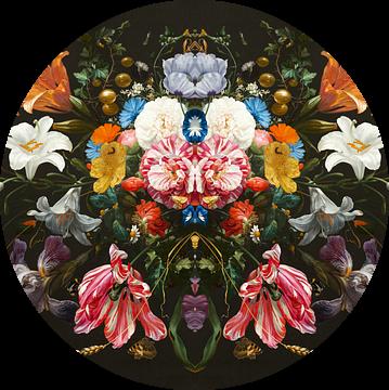 Still Life - The Wonders van Marja van den Hurk