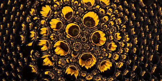 Panorama van een zonnebloem in druppels ( geel )