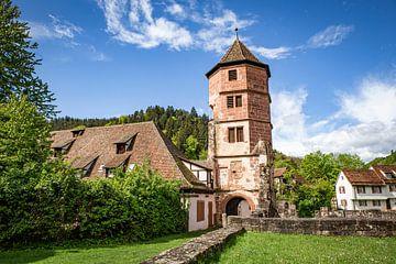 Ruïne van een klooster in Duitsland van Evelien Oerlemans