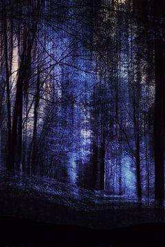 Waldnacht  von Christine Nöhmeier