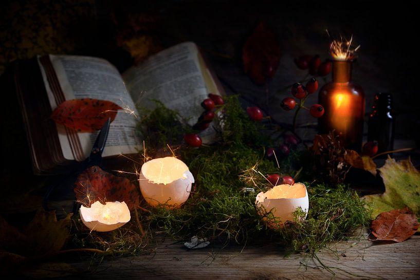 gloeiende en sprankelende eierschalen en apothekersflessen voor een magisch boek over mos en herfstb van Maren Winter