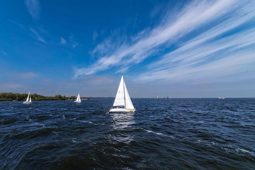 zeilscheepje varend op het blauwe  water van het IJsselmeer van Rita Phessas