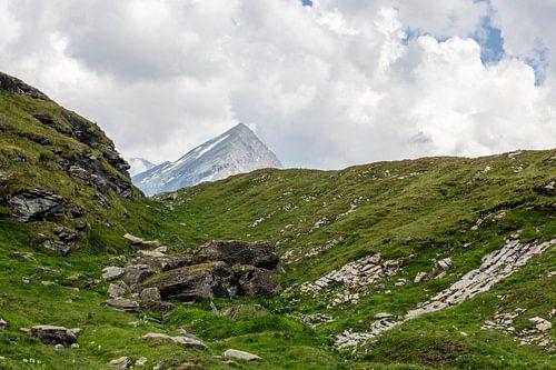 Alpenlandschap