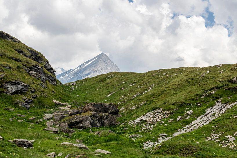 Alpenlandschap van Sander de Jong
