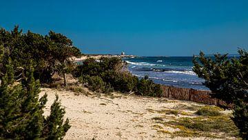 Strand von  Platja de ses Salines von Alexander Wolff