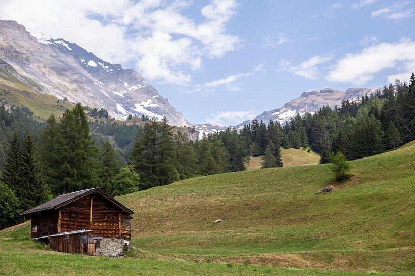Schweizer Alpenlandschaft von Sander de Jong