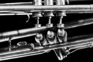 Alte Vintage Jazz Musik Brass Trompete Reflexion schwarz und weiß von Andreea Eva Herczegh