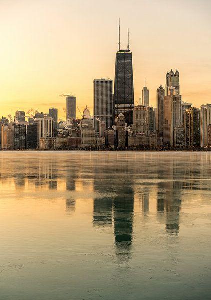 Chicago skyline van Reinier Snijders
