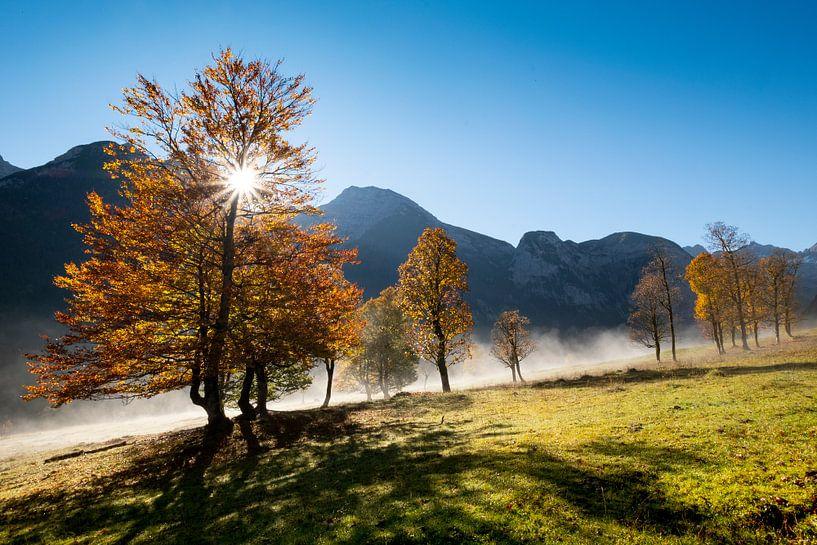 """Herbststimmung am """"Grossen Ahornboden"""" von Andreas Müller"""