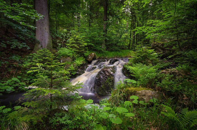 waterfall at Harz Germany van Steffen Gierok