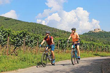 Symbolisch beeld: Jong stel op een fietstocht in de Pfalz bij Maikammer. Op de achtergrond wijnranke van Udo Herrmann
