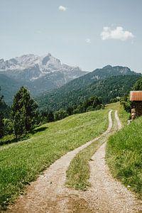 Pad in Duitse Alpen van Patrycja Polechonska
