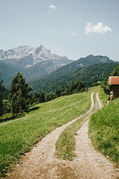 Pad in Duitse Alpen sur