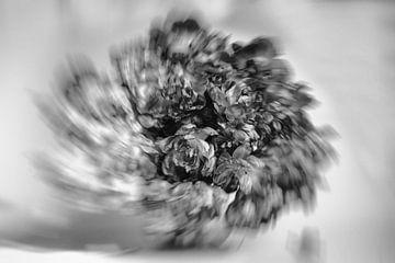BW Rotating Tulips van Roland de Zeeuw fotografie