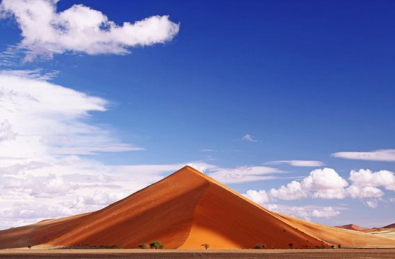 Dune in the Namib - Namibia van W. Woyke