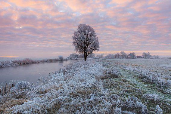 Zonsopkomst in een nevelig landschap bij IJlst in Friesland. Wout Kok One2expose Photography