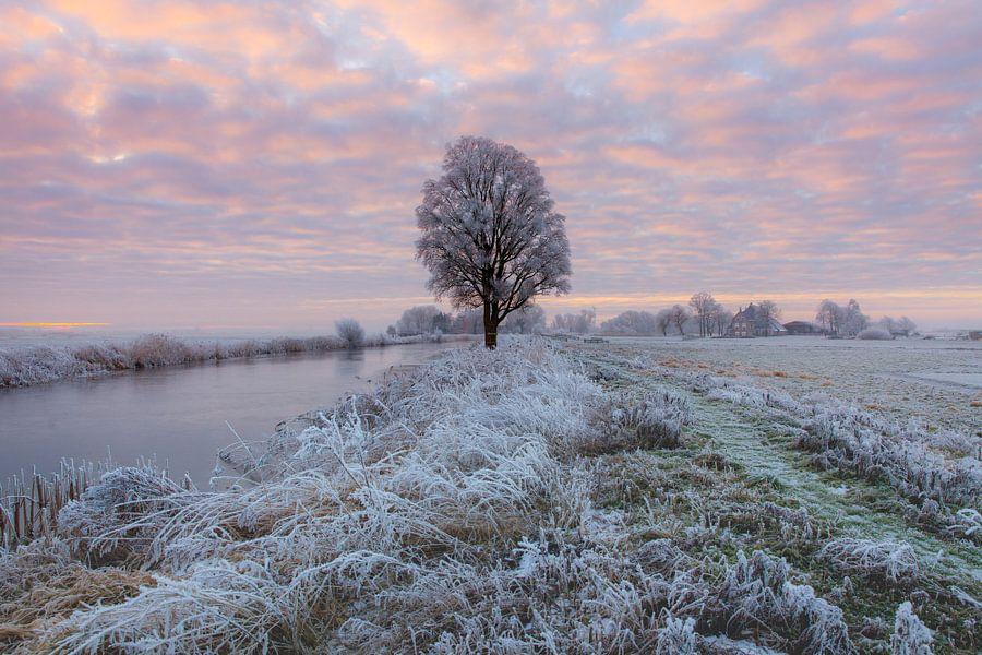 Zonsopkomst in een nevelig landschap bij IJlst in Friesland. Wout Kok One2expose Photography van Wout Kok