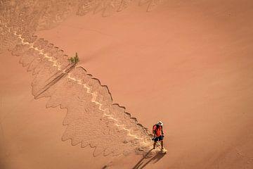 Woestijn wandeling van Linking Pictures