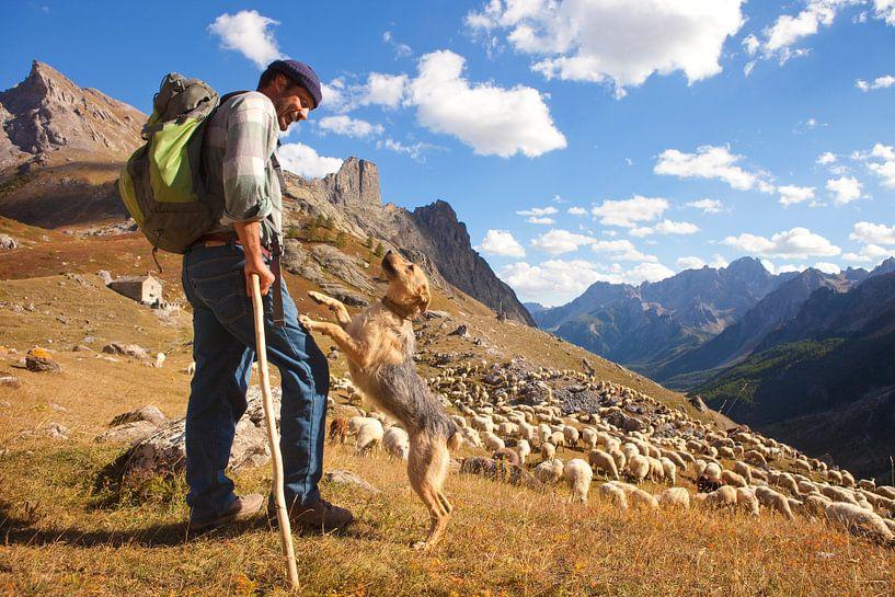Schäferhund mit Hund im Valle Maira von Menno Boermans