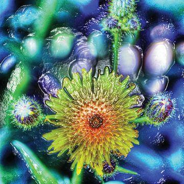 Gelbe Distel Blume in blau violett Wasser Hintergrund von Hendrik-Jan Kornelis