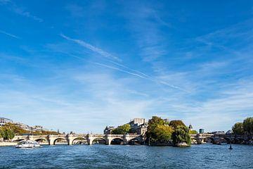 Blick auf die Brücke Pont Neuf in Paris, Frankreich von Rico Ködder
