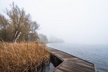 Kralingse plas in de mist van Samantha van Leeuwen