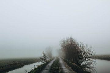 Mist in de Alblasserwaard van Lars Korzelius