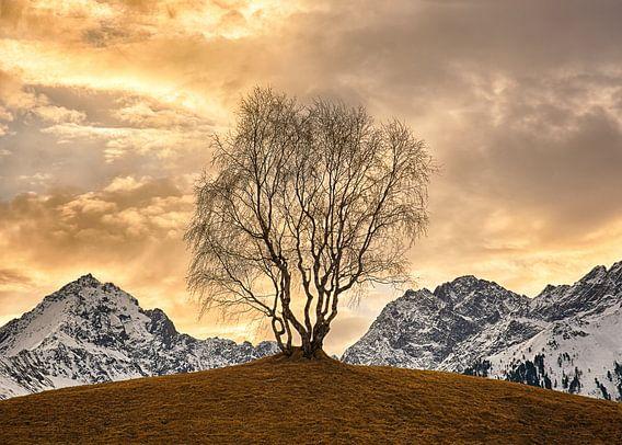 Gouden boom van Christa Thieme-Krus