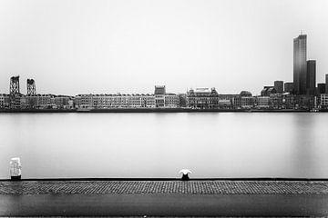 Rotterdam, Noordereiland skyline van 010 Raw