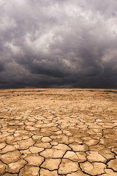 SA11327332 Dunkler Himmel über karger Landschaft von BeeldigBeeld Food & Lifestyle