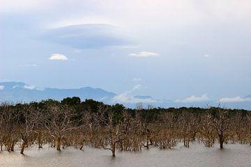 Landschap Uda Walawe Nationaal Park, Sri Lanka van Harm Ormel