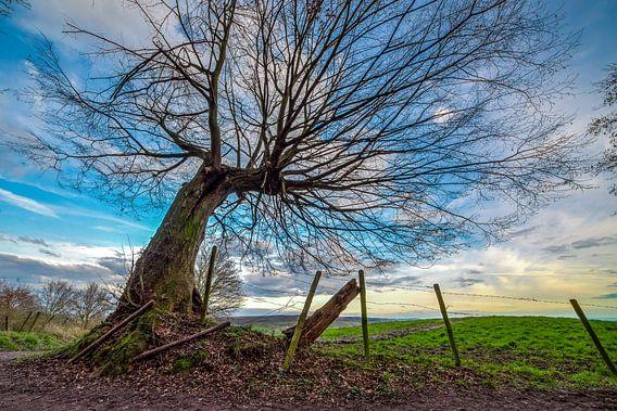 Hills of Limburg van Marco Schep