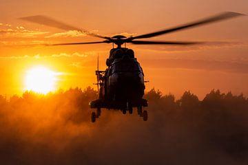 Ein Cougar-Transporthubschrauber wirbelt bei Sonnenuntergang Staub auf von Jimmy van Drunen