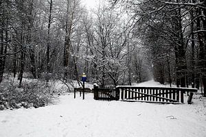 Landgoed Ennemaborgh in wintersfeer van