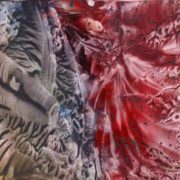 Zellen im Körper von Katrin Behr