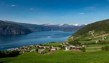 Blick auf Nordfjord, Norwegen von Adelheid Smitt