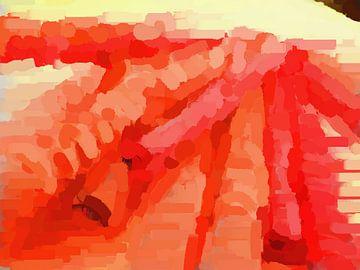 Roxy Roller van Judith Robben