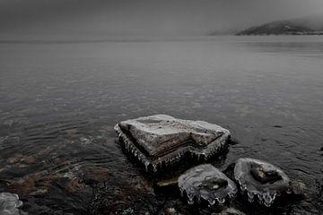 Een eenzame steen in de sneeuw in koud donker water van Michael Semenov
